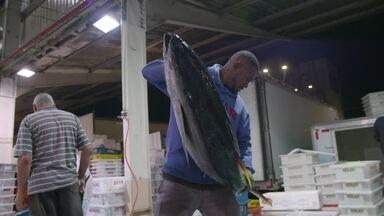 Hoje é dia de vender o peixe: ele mesmo, o próprio! - O poder das técnicas de venda na hora de negociar o peixe!