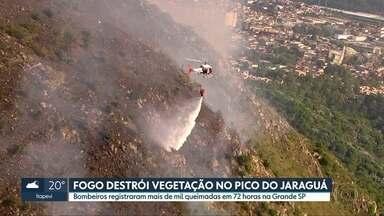 SP2 - Edição de segunda-feira, 04/11/2019 - Incêndio destrói parte do Parque Estadual do Jaraguá, na Zona Norte da capital. Prefeito Bruno Covas descobre coágulo perto do coração e ficará internado por tempo indeterminado. Após sofrer goleada, Corinthians demite o técnico Fábio Carille.