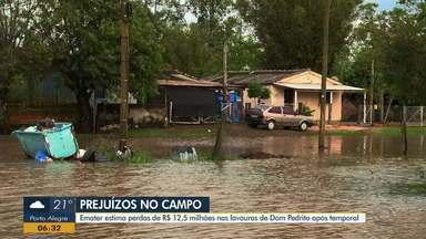 Emater estima perdas de R$ 12,5 milhões nas lavouras de Dom Pedrito após temporal - Cheia do rio Santa Maria prejudica diversos produtores rurais