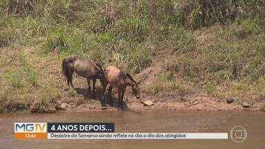 Quatro anos depois do rompimento da barragem da Samarco, tragédia ainda deixa reflexos - Quem perdeu a casa, ainda espera espera por uma nova até hoje. Só a metade da área mais atingida pela lama foi reflorestada.