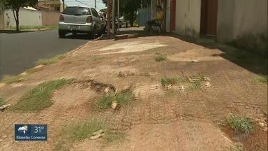 Criança de 2 anos sai de casa sozinha no bairro Ipiranga em Ribeirão Preto - A mãe dela teria deixado a porta de casa aberta na madrugada desta terça-feira (5) devido ao calor.