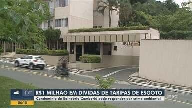 Condomínio de Balneário Camboriú pode responder por crime ambiental - Condomínio de Balneário Camboriú pode responder por crime ambiental
