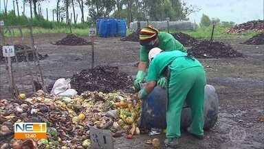 Reaproveitamento de resíduos plásticos e lixo orgânico é discutido no Recife - Temas foram abordados em palestras na Conferência Brasileira de Mudança do Clima.
