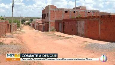 Centro de Controle de Zoonoses intensifica ações em Montes Claros - Maior índice de infestação da dengue no município foi no bairro Vila Sion.