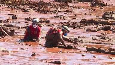 Bombeiros encontram com sobreviventes que ajudaram a salvar do mar de lama em Brumadinho - 'Por mais que a gente agradeça, que peça a Deus pela vida deles, acho que nada disso paga', fala funcionário da Vale salvo. Bombeiros ainda seguem na procura por corpos desaparecidos no local.