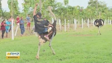Corrida de avestruz reúne competidores de diversas partes da Amazônia - Evento reuniu muitos curiosos.
