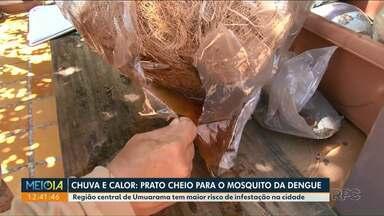 Zona 2 em Umuarama concentra maior infestação do mosquito da dengue - Novo levantamento aponta infestação de 1,4% na cidade.