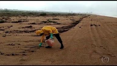 Exército busca novos fragmentos de óleo na Praia da Regência, no Espírito Santo - Os fragmentos apareceram nesta quarta (13) e foram recolhidos pelos soldados. A praia é conhecida por ser um dos principais pontos de desova de tartaruga.