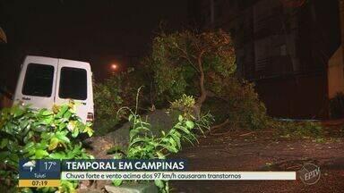 Temporal derruba 35 árvores em Campinas - Ventos passaram de 97 km/h durante chuva que atingiu a cidade entre a noite de quinta-feira (14) e a madrugada de sexta (15).