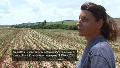 Assista ao bloco 01 do Caminhos do Campo do dia 17 de novembro de 2019 - Aumenta a participação da mulher nas atividades agrícolas do Brasil, segundo o censo agropecuário 2017