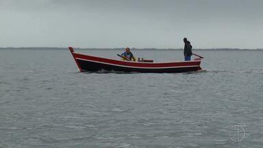 Após período de defeso na Lagoa de Araruma, pescadores pescam toneladas de peixe - Confira a alegria dos pescadores no primeiro dia da liberação.
