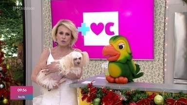 Ana Maria se emociona ao revelar que sua cachorrinha está cega - Cristal teve um glaucoma e perdeu a visão