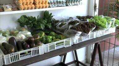 Cresce procura por alimentos orgânicos - Pessoas que tem uma pequena ou grande produção de frutas, legumes e verduras livres de agrotóxicos, aproveitam feiras e até delivery para fazer a venda dos produtos.