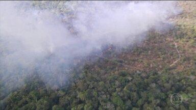 Brigadistas são presos suspeitos de incendiar área de proteção no Pará - Segundo a polícia, quatro voluntários de uma brigada de incêndio teriam botado fogo na mata em Alter do Chão para conseguir doações de ONGs. Defesa dos suspeitos nega.