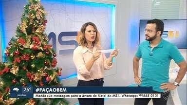 Confira as mensagens dos telespectador da árvore de Natal do MS1 - Para participar é preciso enviar uma mensagem com #FACAOBEM para o whatsapp ou entregar na emissora