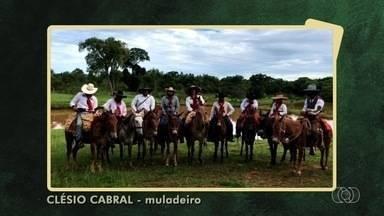 Telespectador registra comitiva de muladeiros rumo à Trindade - Confira as Imagens do Campo.