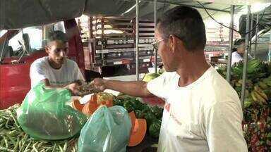 Feira Agrária é atração em Matriz do Camaragibe - Agricultores familiar comercializam produtos em diversas cidades do estado.