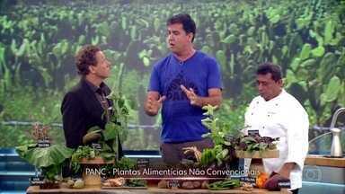 Biólogo explica o que são as PANCs e dá exemplos de seu uso na gastronomia - Desafio dos cozinheiros é preparar um prato com 1 proteína e 2 PANCs