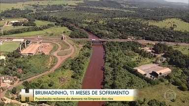 Onze meses depois da tragédia de Brumadinho, população ainda sofre com rios contaminados - Vale diz que está investindo na recuperação do local, mas que rios só estarão recuperados em cinco anos.