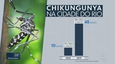 Número de casos de chikungunya cresce três vezes mais em relação a 2018 - Foram registradas 48 mortes por conta da doença e a cada 13 minutos uma pessoa foi infectada pelo mosquito Aedes Aegypti.
