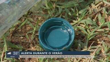 Calor acelera ciclo do mosquito da dengue; veja cuidados antes de viajar - Cidades do Sul de Minas registram aumento nos casos da doença