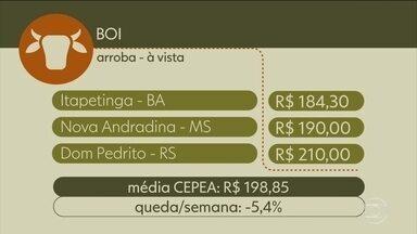 Confira os preços do boi gordo - Confira os preços do boi gordo