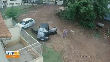 Mulher agride funcionárias de canil por não receberem cães em Sertãozinho, SP - Moradora disse que ficou irritada ao ser gravada e está sendo investigada por lesão corporal.