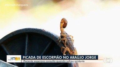 Mulher é picada por escorpião dentro do Hospital Araújo Jorge em Goiânia - Paciente esperava consulta quando sofreu acidente.