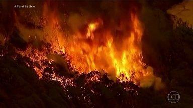 Pior temporada de incêndios: Fantástico atravessa áreas afetadas pelas chamas na Austrália - Desde setembro do ano passado, 28 pessoas morreram e mais de duas mil casas sumiram do mapa. Uma estimativa indica que mais de um bilhão de animais podem ter morrido.