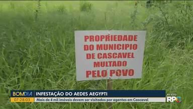 Agentes de endemia recebem ajuda de moradores na hora de fiscalizar imóveis - Em Cascavel, vizinhos de um terreno que pertence ao município, colocaram uma placa no local que está com mato alto.