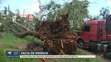 Número de casas sem energia elétrica devido a queda de árvores cresce 34% em Campinas - CPFL registrou uma diferença de 689 casos de 2018 para 2019. Consumidor tem desconto automático na conta quando falta luz; entenda.