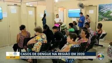Número de casos de dengue no Oeste Paulista é preocupante - Em Lucélia, já tem mais de 100 registros da doença.
