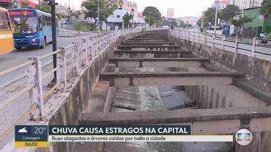 Chuva alaga avenidas e causa estragos em Belo Horizonte - Árvores caíram e regiões ficaram sem luz.