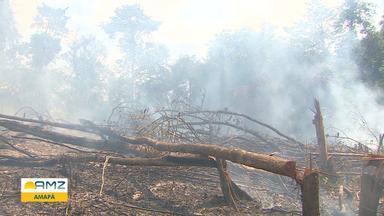 AP registra cerca de 1,3 mil focos de incêndio em 2019 - Índice é o menor da Região Norte.