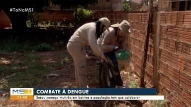 Combate ao Aedes: secretaria reforça fiscalização de terrenos e casas - Capital tem 7 bairros em risco e 43 em alerta para o mosqui