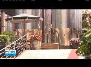 Ministério da Agricultura encontra tanque de água contaminado na fábrica da Backer - Em auditoria feita pelo ministério da agricultura na fábrica da cervejaria Backer, constatou que um tanque de água foi contaminado com Dietilenoglicol.