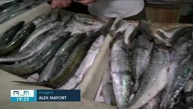 Venda de peixes em Angra dos Reis aumenta durante o verão - Pescador comenta que venda aumenta em até 100% na estação mais quente do ano.
