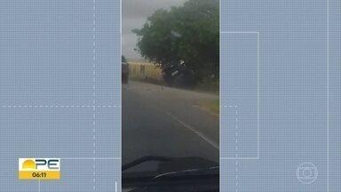 Diretor-presidente da Cehab fica ferido em acidente na PE-49 - Vídeo mostra momento em que ele sai da pista e bate em uma árvore.