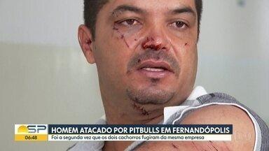 Homem é atacado por pitbulls em Fernandópolis - Foi a segunda vez que os dois cachorros fugiram da mesma empresa.