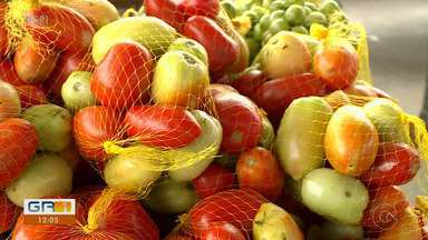 Preço do tomate volta a subir nas feiras de Petrolina - Os clientes podem encontrar a hortaliça custando R$ 5 nas feiras da cidade.