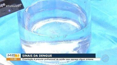 Agentes da Capital são treinados para uso de mosquitos com bactéria Wolbachia - Bactéria ajuda a neutralizar doenças transmitidas pelo Aedes