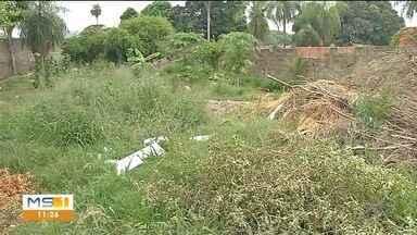 Em Corumbá, terrenos vazios se transformam em lixões - Prefeitura já notificou mais de 500 áreas na cidade