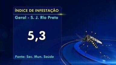 Secretaria de Saúde confirma 117 casos de dengue em Rio Preto - São José do Rio Preto (SP) confirmou 117 casos de dengue no primeiro mês do ano de 2020.