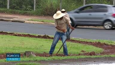 Adubo usado em rotatórias de Londrina provoca mau cheiro e incomoda moradores - Prefeitura contratou empresa para plantar flores nas rotatórias e adubo está incomodando moradores de várias regiões da cidade