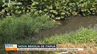 Moradores de Nova Brasília de Itapuã reclamam de casos de dengue e chikungunya no local - A incidência dessas doenças é maior durante o verão, período de reprodução do mosquito.