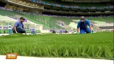 Com novo gramado, Arena Palmeiras está pronta para receber jogos - Com novo gramado, Arena Palmeiras está pronta para receber jogos