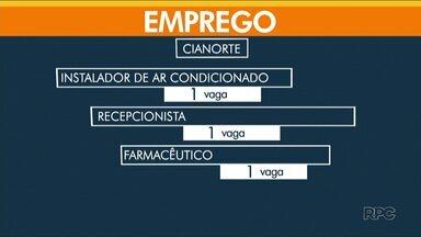 Em Umuarama são 125 vagas de emprego disponíveis na agência do trabalhador - Confira as vagas de Paranavaí e Cianorte.