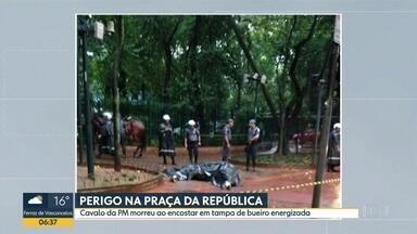 Cavalo da PM morre após levar choque na Praça da República - Animal foi eletrocutado após encostar em tampa de bueiro na última sexta (7).