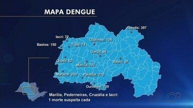 Confira novos levantamentos sobre dengue no Centro-Oeste Paulista - Confira novos levantamentos sobre dengue no Centro-Oeste Paulista