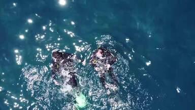 'Vai Encarar?: Gustavo Garcia faz mergulho na Gruta Azul, em Arraial do Cabo, RJ - Assista a seguir.
